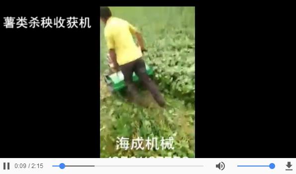 薯类杀秧挖掘机收获机